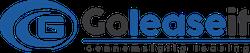 Goleaseit.dk